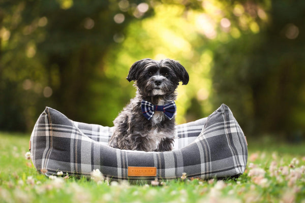 Ralph and Co Tartan Dog Bed - Marlow Nest