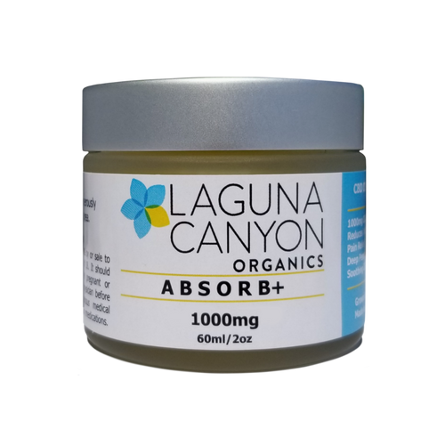 ABSORB+ - 1,000mg Body Ointment