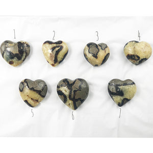 Septarian Dragon Heart | Dinsmore Originals - metaphysical jewelry, spiritual cleansing supplies, genuine healing crystals