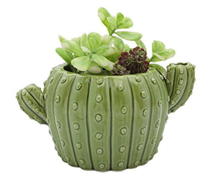 Streamline Ceramic Cactus Planter Pot - AsitiGift