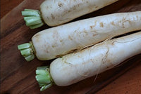 100 Pcs Snow White Carrot Seeds - AsitiGift