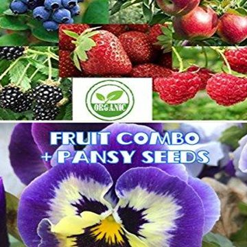 Fruit Combo Pack 600+ Organic Seeds - AsitiGift