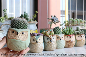 Succulent Plant Pot Mini Ceramic Flower Cactus - AsitiGift