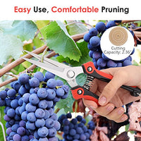 Heavy Duty Stainless Steel Ultra Sharp Pruning Shears - AsitiGift