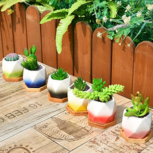 Ceramic Succulent Planter Pot Set Flower Cactus Holder Unique Color - AsitiGift
