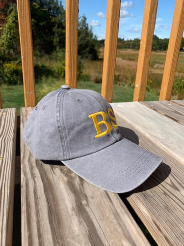 Bid Specialists, Inc. Baseball Hat