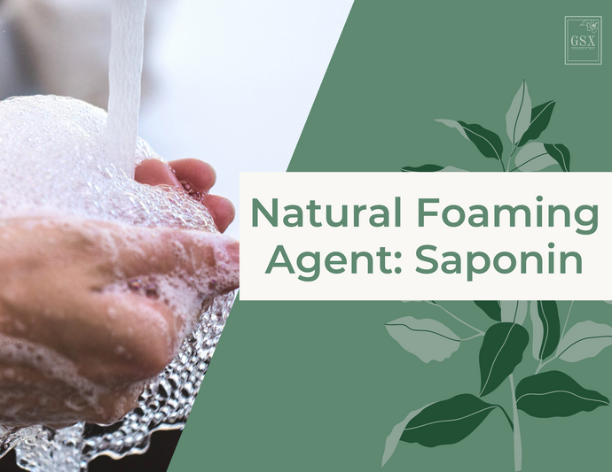 Natural Foaming Agent: Saponin