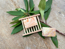 Mini Soap Duo and Ladder