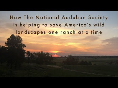 Audubon Conservation Ranching