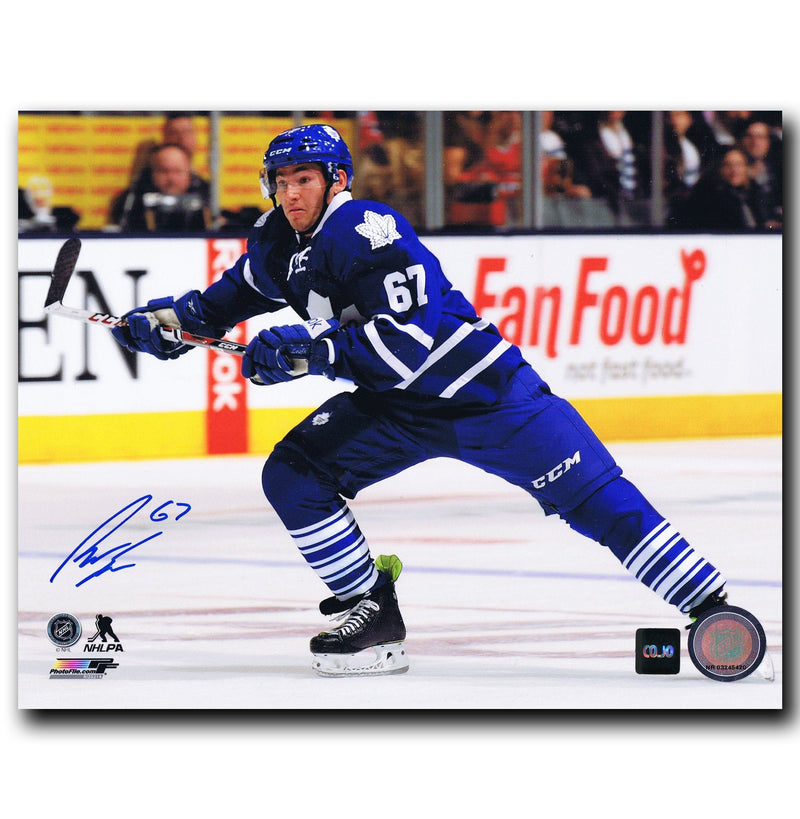 Brandon Kozun Toronto Maple Leafs Autographed 8x10 Photo CoJo Sport Collectables