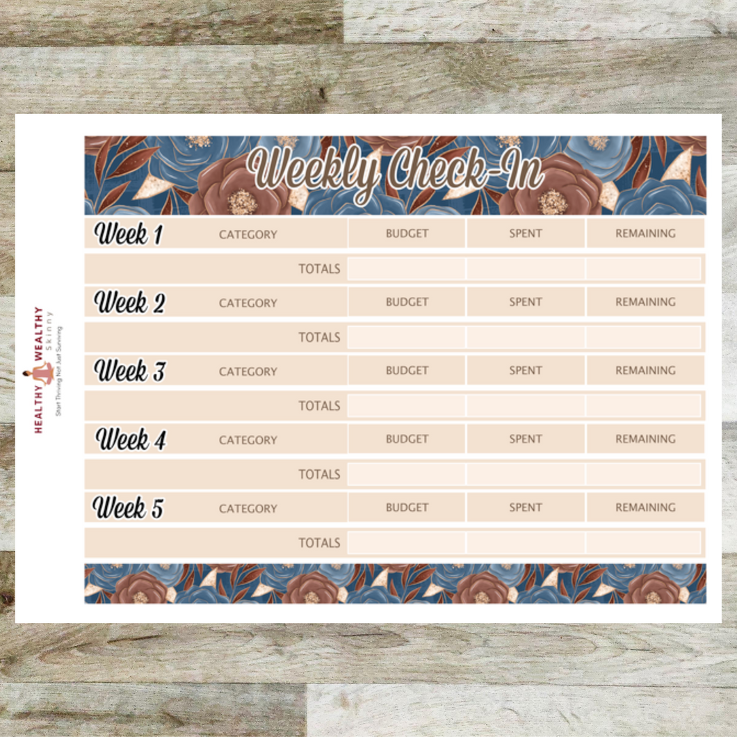 Weekly Check-In Budget Stickers - September - Erin Condren Monthly Planner Stickers - REMOVABLE - Healthy Wealthy Skinny