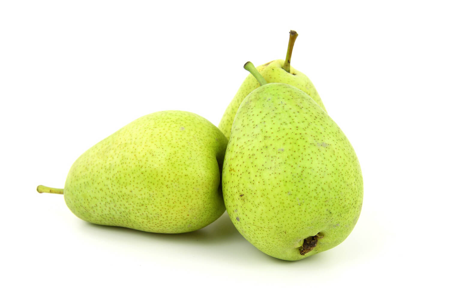 Benefits of Pears for Dogs and how much they can have