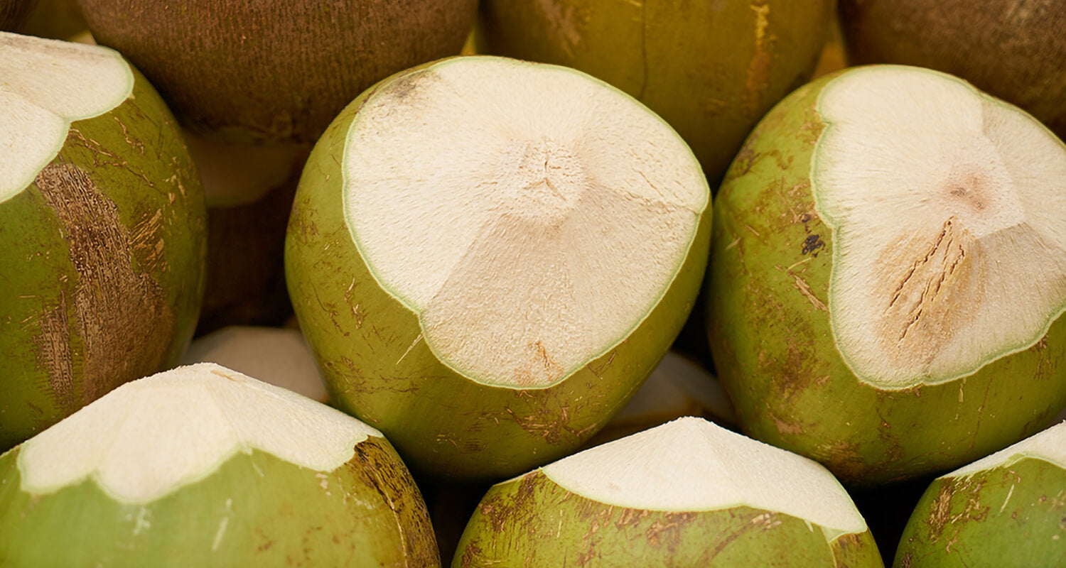 Why eating coconut is healthy for your dog and how it impact on his coat.
