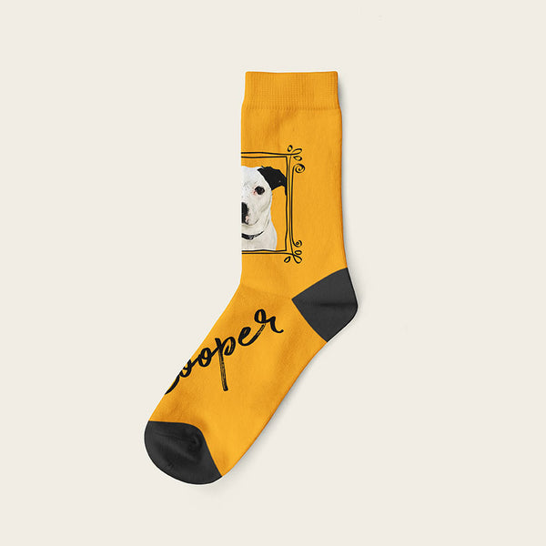 Custom Dog Socks With Frame - Cooper Crow Socks Crew / Orange