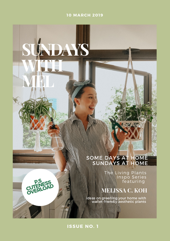 SUNDAYS AT HOME - GREENING YOUR HOME WITH MEL