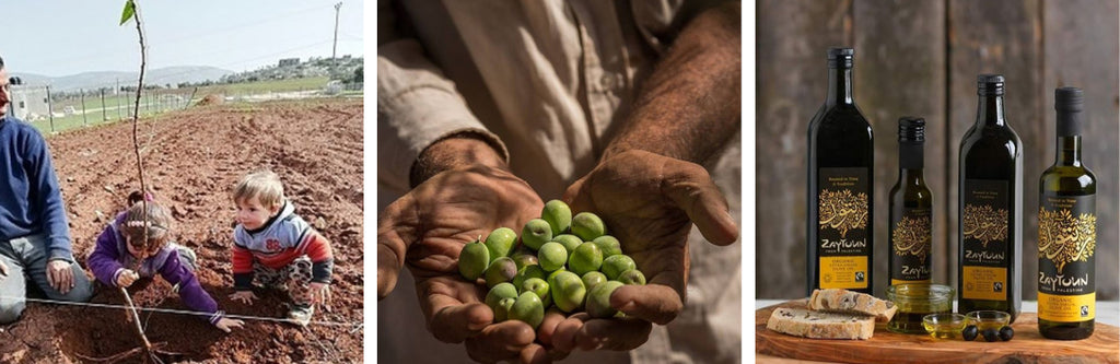 giving back to the community - olive tree planting