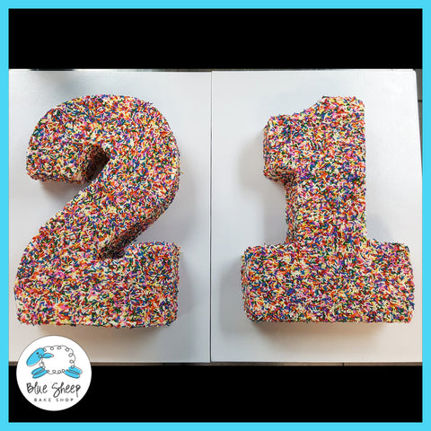 Number 21 Carved Cake - Covered in Sprinkles! NJ Custom Cakes by Blue Sheep Bake Shop