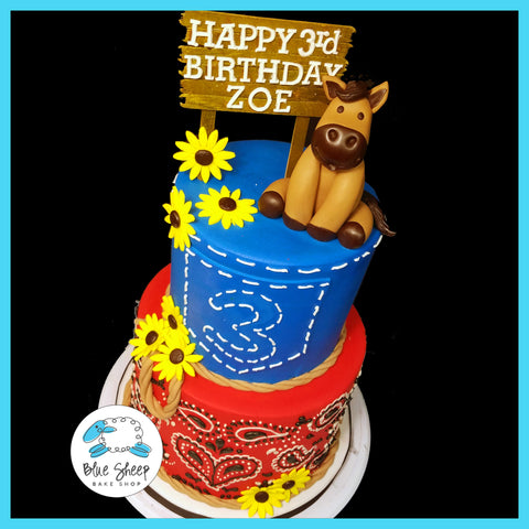 zoes barnyard birthday cake nj