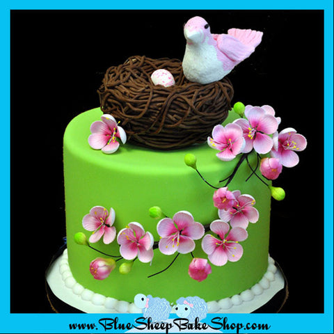 Baby Bird Baby Shower Cake