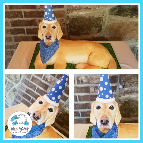 Sculpted Labrador Retrieve Dog Cake - NJ Custom Cakes