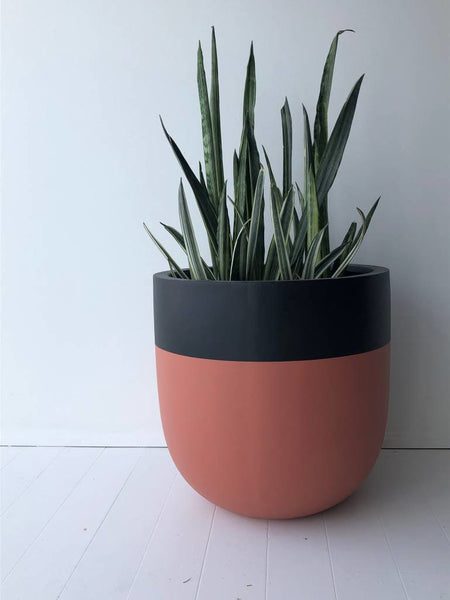 divided large pot