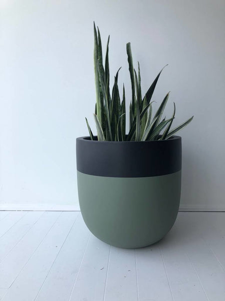 divided small pot