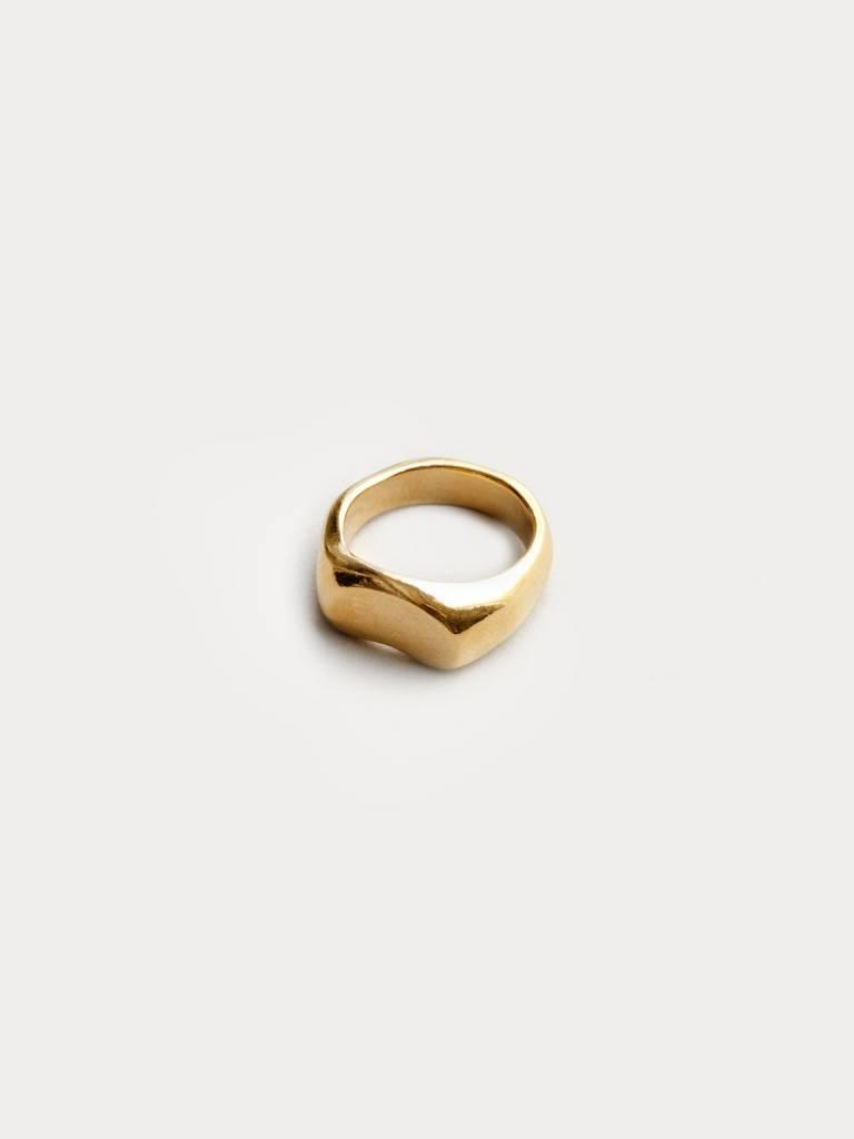 kidney signet ring