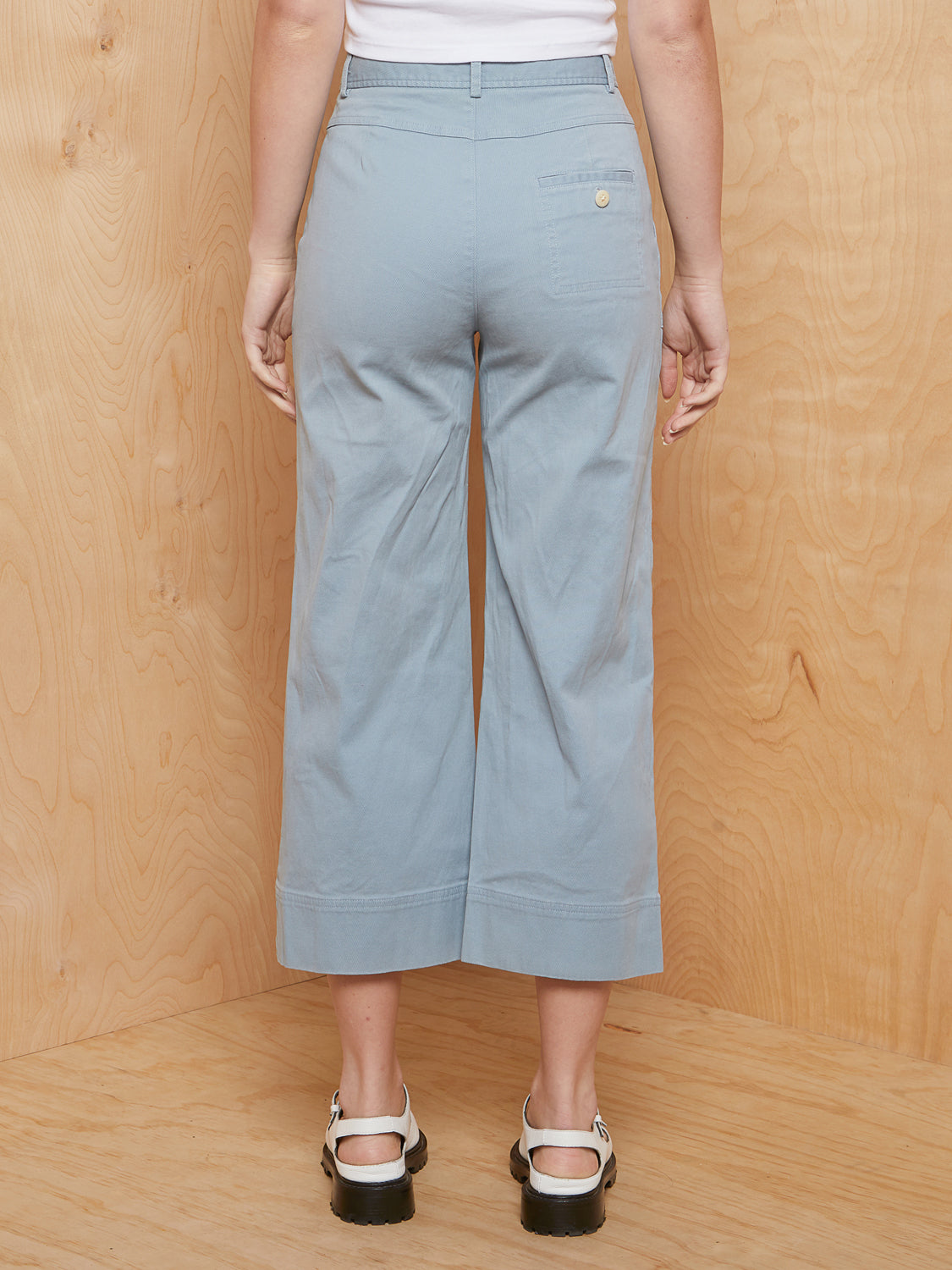 Steve Alan Wide Cropped Leg Pants
