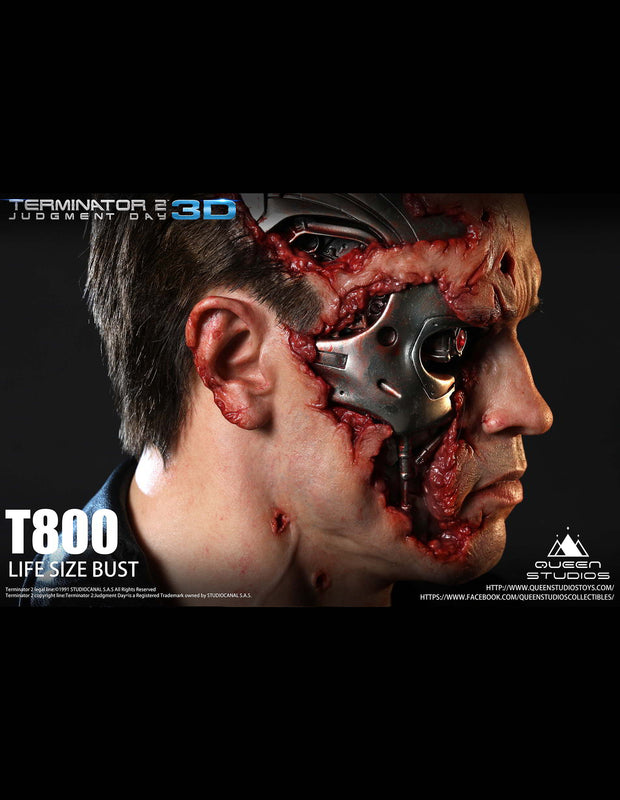 Terminator T800 bust collectible