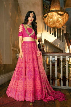 Butterfly Bride Net Party Wear Bollywood Lehenga Choli