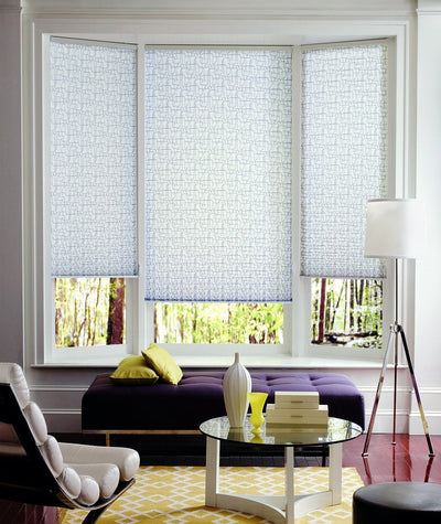 Hunter Douglas Window Treatments Pleated Shades Room