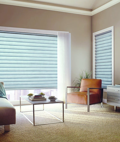 Hunter Douglas Window Treatments Solera Living room