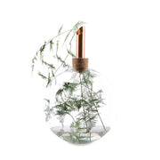 Glasilium Vase Transparent