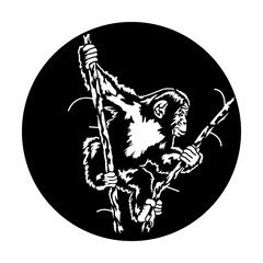 Apollo Swinging Chimp Gobo