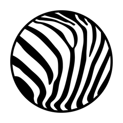 Apollo Zebra Gobo