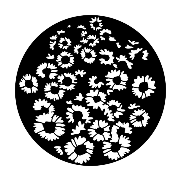 Apollo Sunflower Breakup Gobo