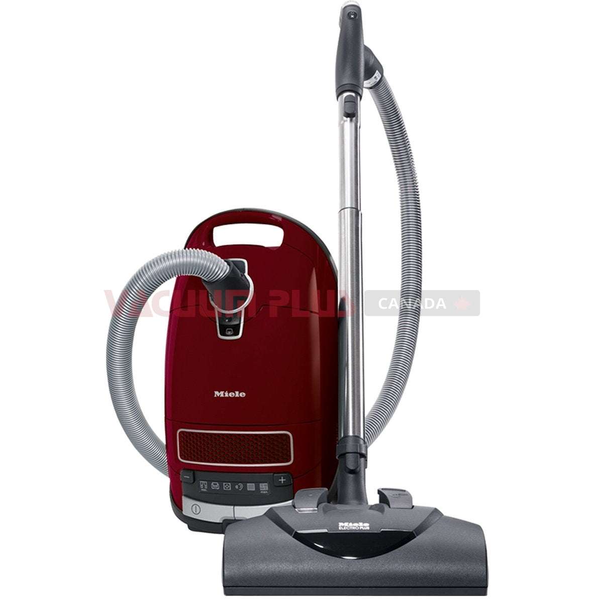 miele c3 cat and dog canister vacuum - Canister Vacuum Reviews