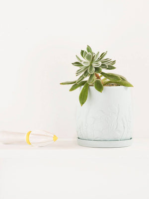 Relief Plant Pot Peppermint