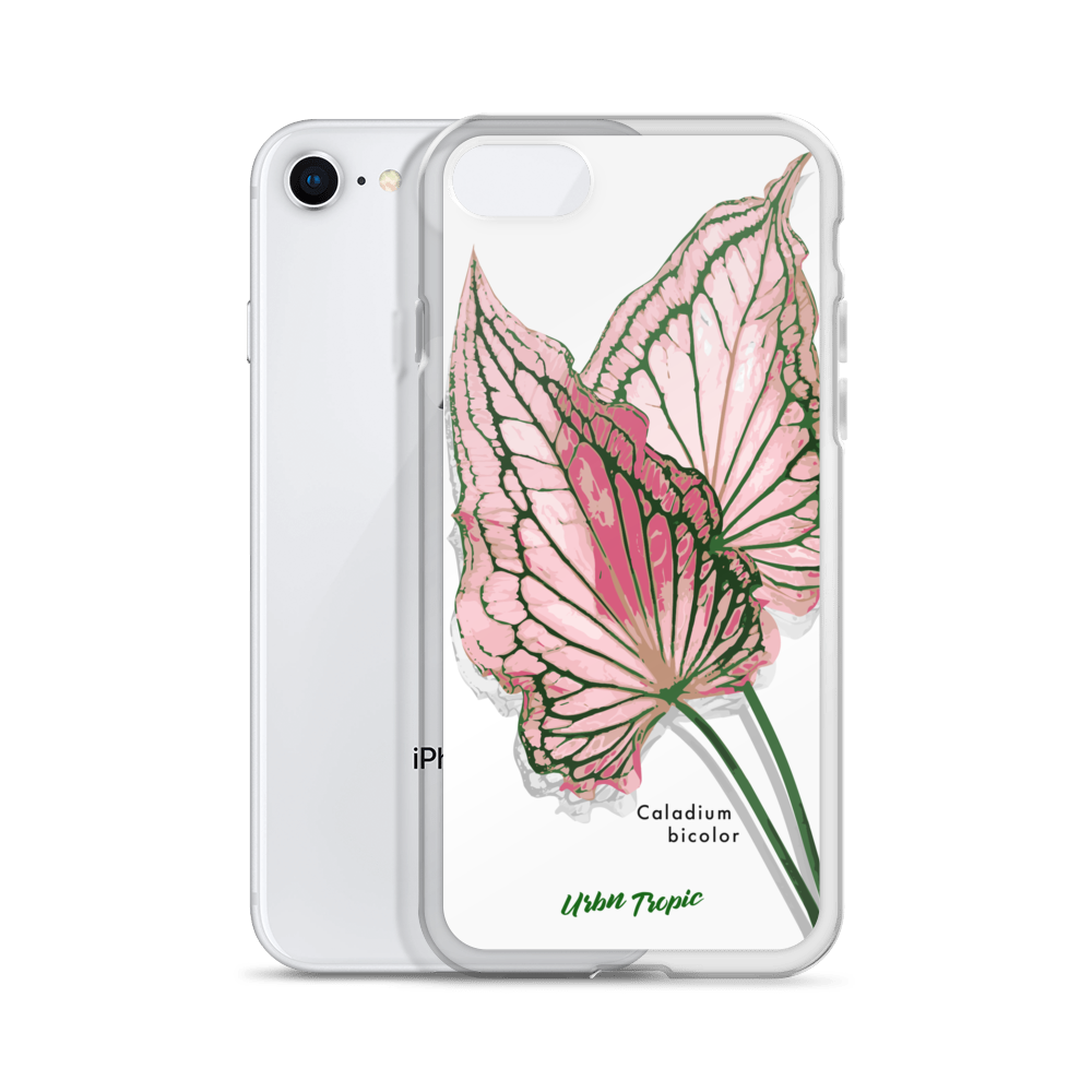 Aroid Spotlight Caladium Bicolor iPhone Case
