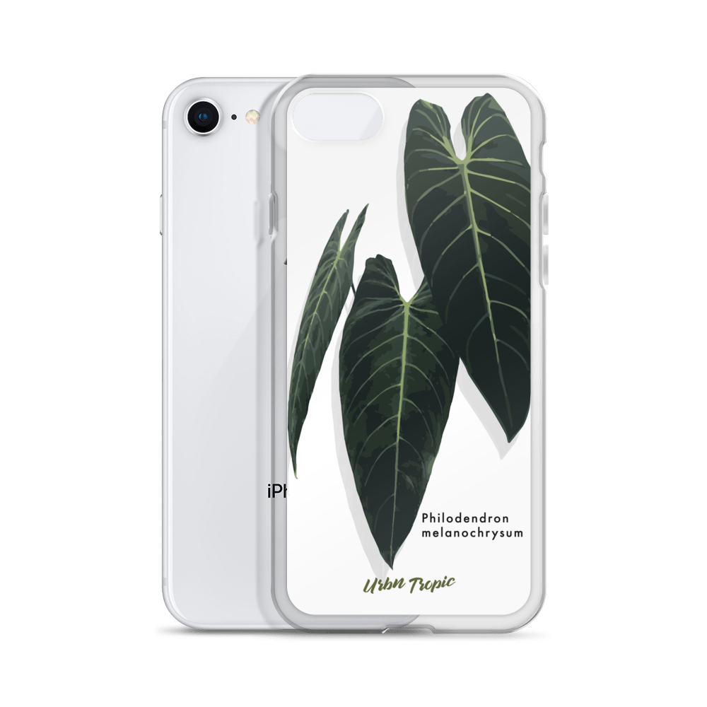 Aroid Spotlight Melanochrysum iPhone Case