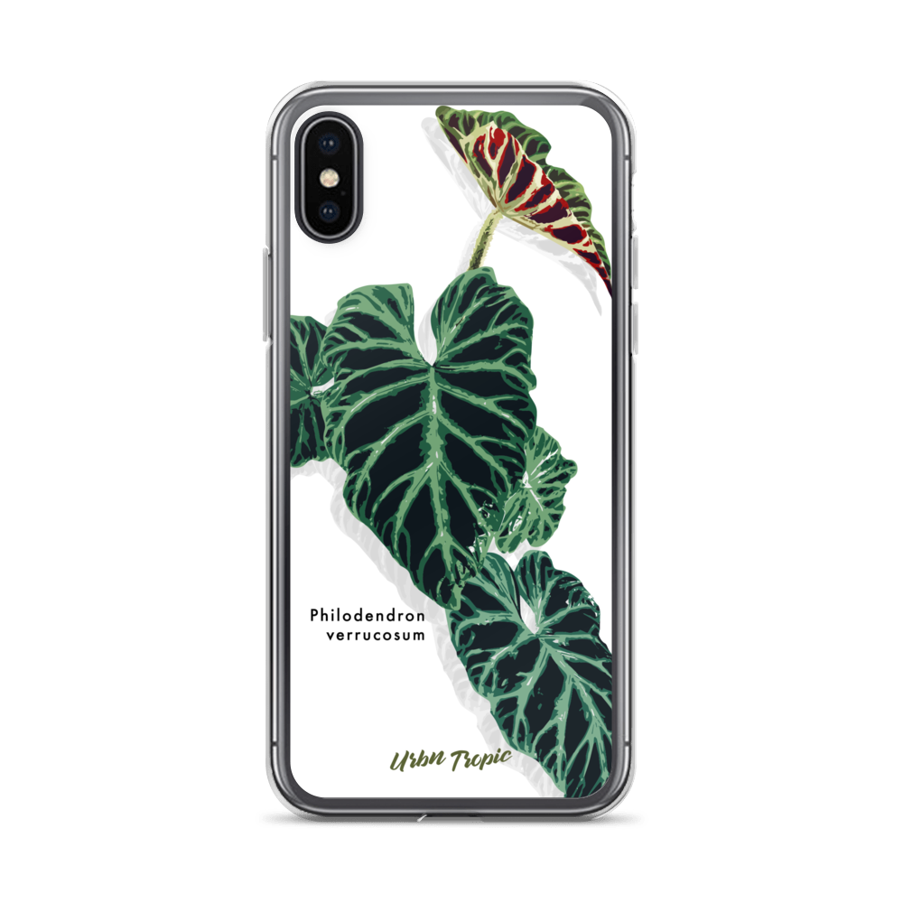 Aroid Spotlight Verrucosum iPhone Case