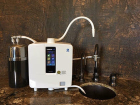 Multipure Aquaperform for Ionizer Prefiltration