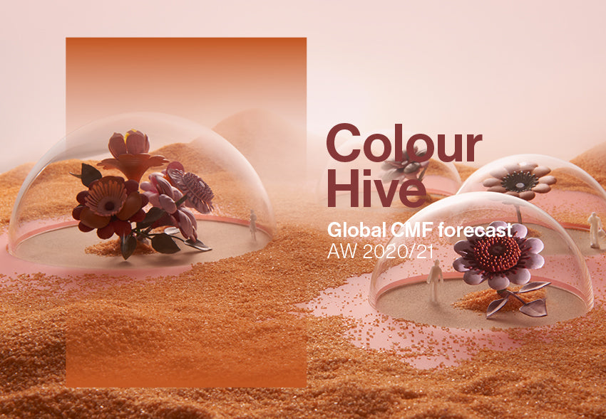 Colour Hive at IDS Toronto 2020