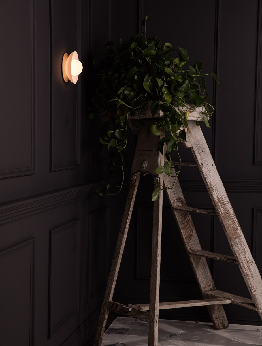 Mini Dome Sconce