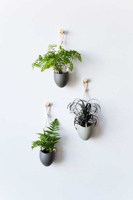 Spora Wallplanter