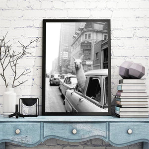 Wall Art - Llama in a Taxi In Times Square Canvas Print | Canvas Art Boutique