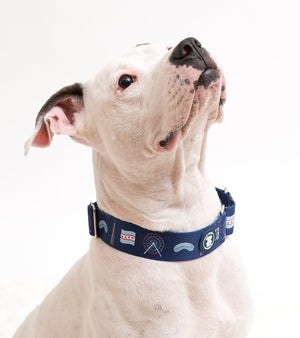 Navy Blue 'Chicago Lovers' Collar