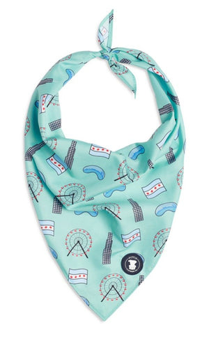 Light Blue Chicago Themed Dog Bandana I Pittie Clothing Co.