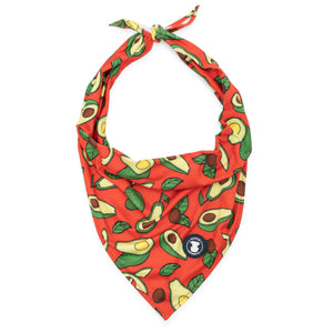 'All You Avo Wanted' Avocado Dog Bandana | Pittie Clothing Co.