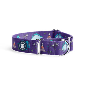 Purple Dino-Mite Collar